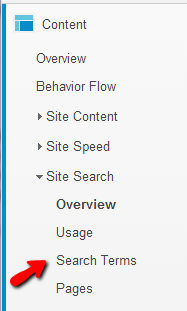 Site search terms can be found in Google Analytics if you use their search tool.